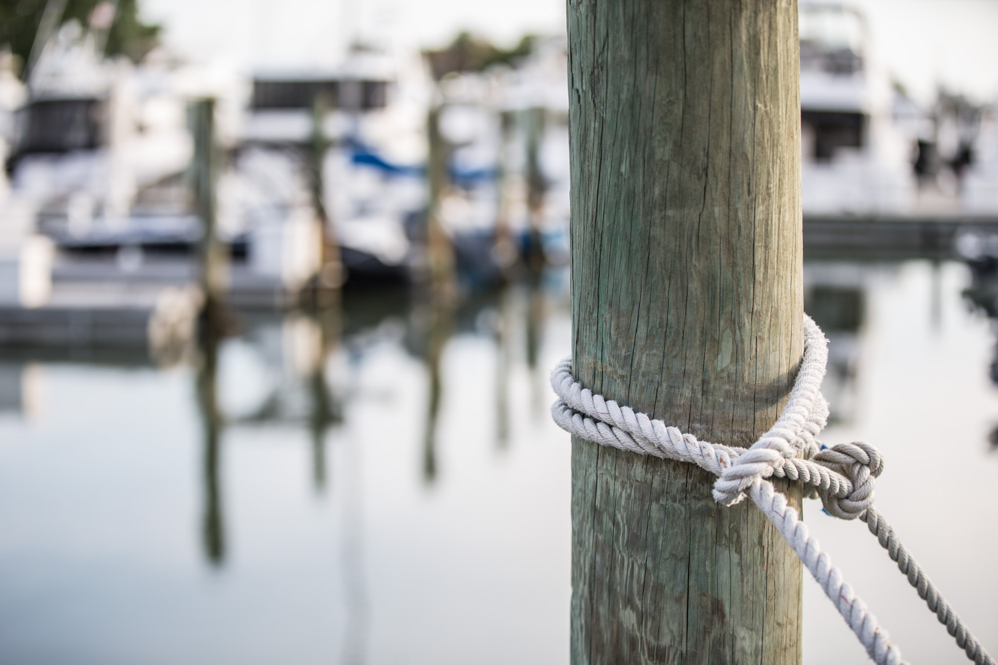 How To Tie A Bowline Knot Discover Boating Piling The Pronounced Boh Lin
