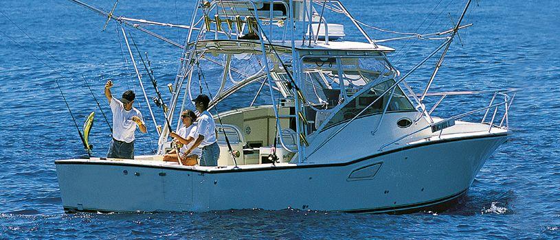 Sportfishing Yacht Discover Boating